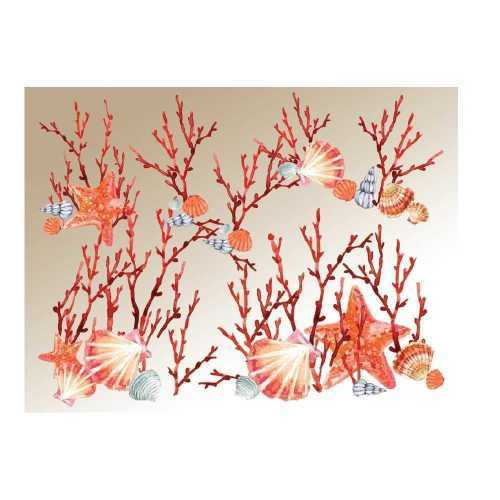 1530009967-coralli-beige.jpg