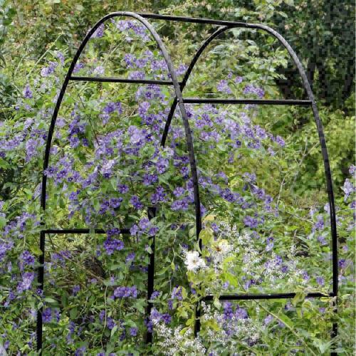 arco-di-trionfo-in-metallo-piante.jpg
