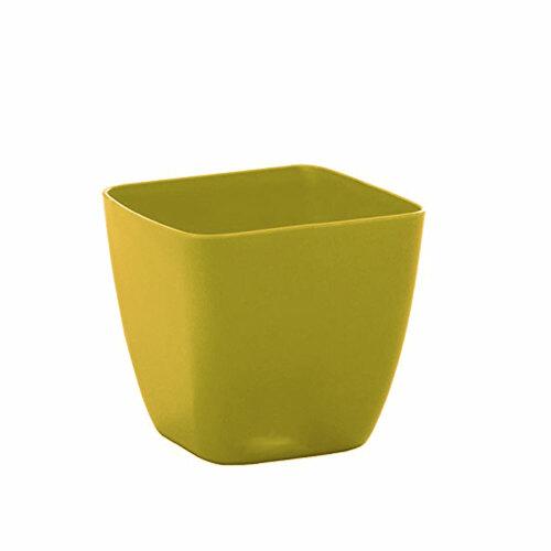vaso-nicoli-quadro-1315bo-bamboo.jpg